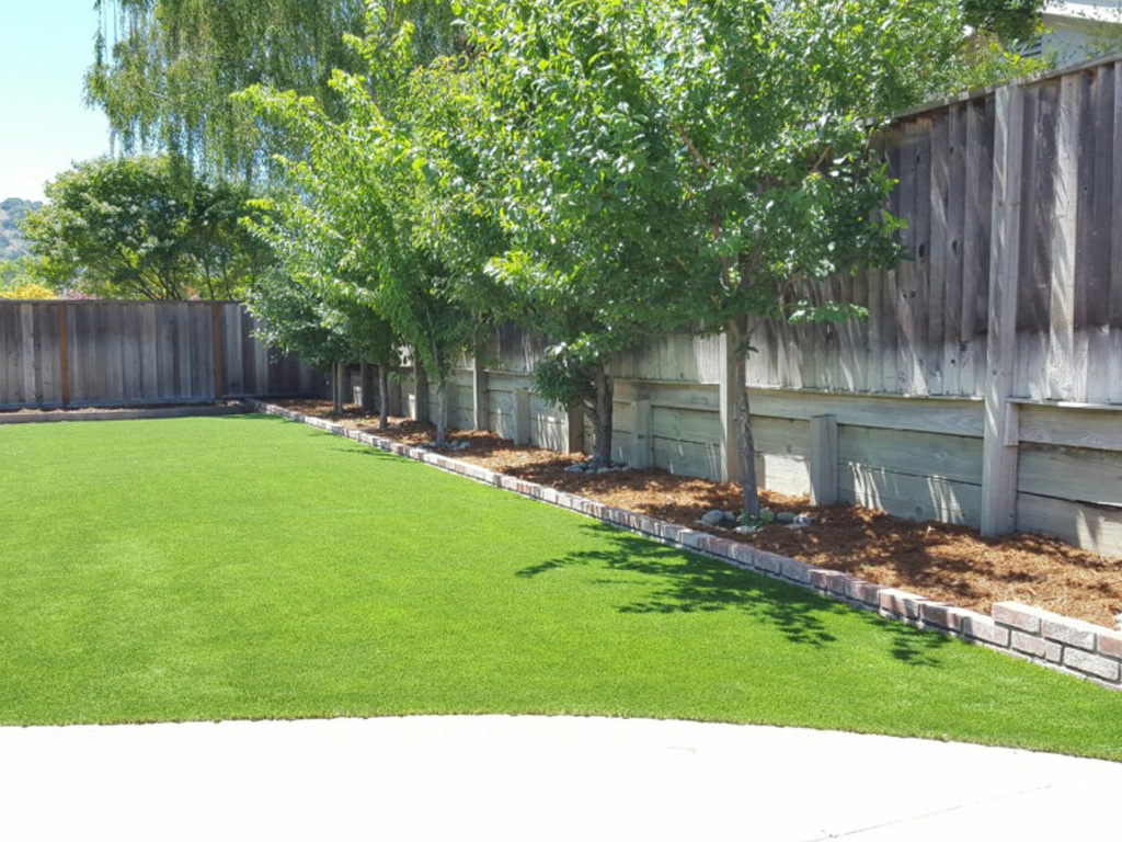 Artificial Turf Installation Springville, Virginia Backyard Playground,  Beautiful Backyards