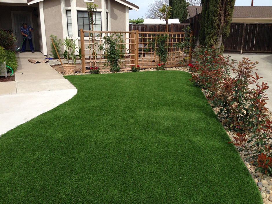 Fake lawn narrows virginia landscape ideas front yard design for Best grass for landscaping