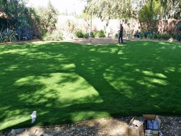 Artificial Grass Photos: Artificial Turf Cost Accomac, Virginia Garden Ideas, Backyards