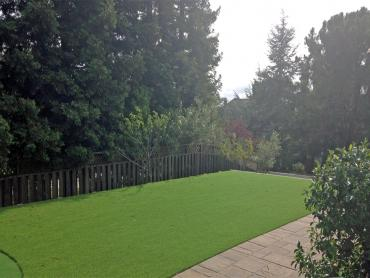 Artificial Grass Photos: Artificial Turf Cost Melfa, Virginia Landscape Photos, Backyard Designs