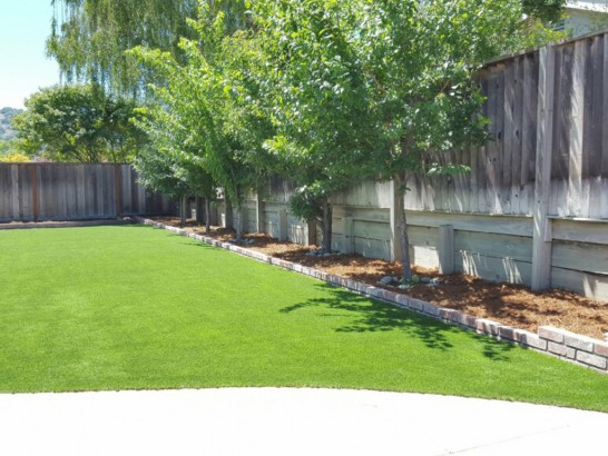 Artificial Turf Installation Springville, Virginia Backyard Playground, Beautiful Backyards artificial grass