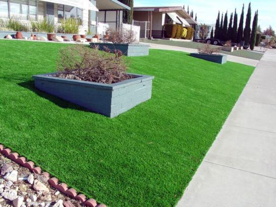 Artificial Grass Photos: Best Artificial Grass Emporia, Virginia Landscaping Business, Front Yard Landscape Ideas
