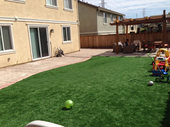 Artificial Grass Photos: Best Artificial Grass Exmore, Virginia Backyard Deck Ideas, Backyards