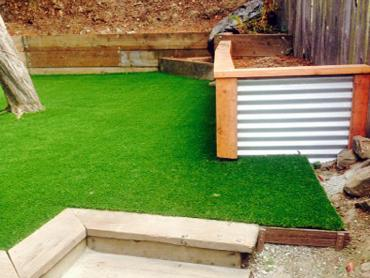 Artificial Grass Photos: Fake Grass Carpet Oak Level, Virginia Roof Top, Backyards