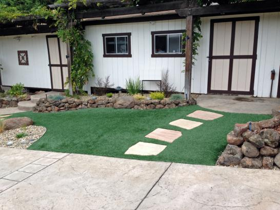 Artificial Grass Photos: Fake Grass Carpet Tasley, Virginia Roof Top, Front Yard Landscaping Ideas