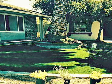 Artificial Grass Photos: Fake Grass Prices Fork, Virginia Landscape Rock, Landscaping Ideas For Front Yard