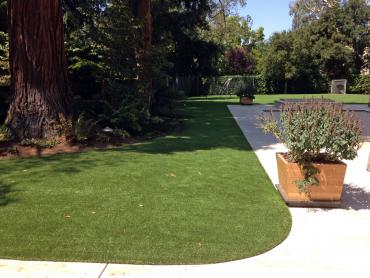 Artificial Grass Photos: Fake Lawn Hayfield, Virginia Fake Grass For Dogs, Front Yard Ideas