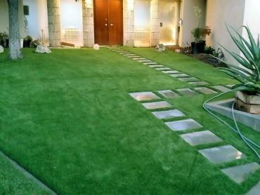 Artificial Grass Photos: Faux Grass Lovingston, Virginia Landscape Design, Front Yard Design