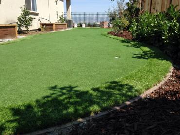 Artificial Grass Photos: Grass Carpet Belle Haven, Virginia Lawns, Backyards