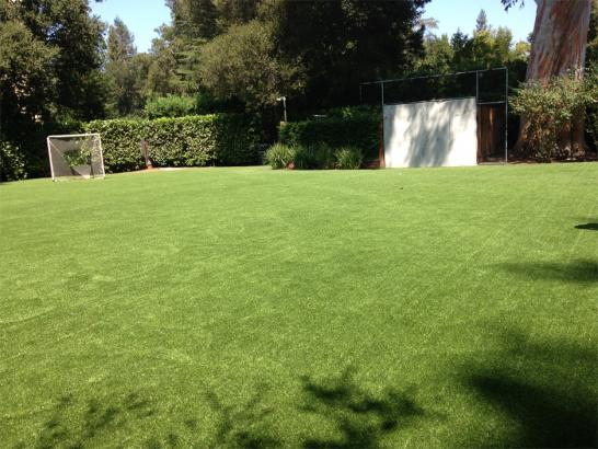 Artificial Grass Photos: Grass Carpet Dendron, Virginia Softball, Backyard Design