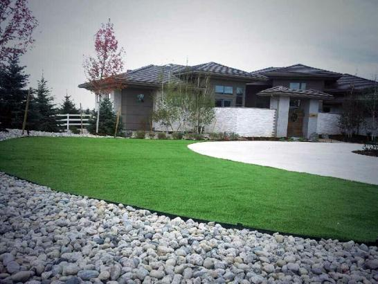 Artificial Grass Photos: Grass Turf Independent Hill, Virginia Gardeners, Front Yard Ideas