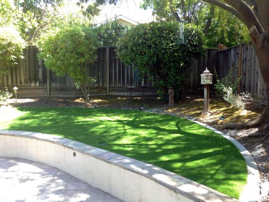 Artificial Grass Photos: How To Install Artificial Grass Middlebrook, Virginia Lawns, Commercial Landscape