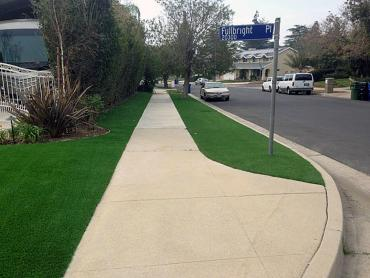 Artificial Grass Photos: Outdoor Carpet Annandale, Virginia Gardeners, Small Front Yard Landscaping