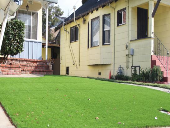 Artificial Grass Photos: Outdoor Carpet Martinsville, Virginia City Landscape, Small Front Yard Landscaping
