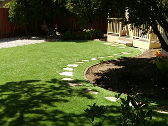Artificial Grass Photos: Plastic Grass Apple Mountain Lake, Virginia Backyard Playground, Backyard