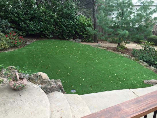 Artificial Grass Photos: Plastic Grass Daleville, Virginia City Landscape, Beautiful Backyards