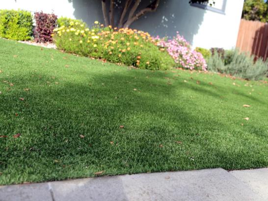 Artificial Grass Photos: Plastic Grass Franconia, Virginia Lawn And Landscape, Front Yard Landscaping Ideas