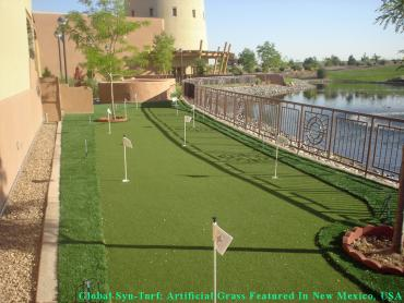 Synthetic Grass Arlington, Virginia Gardeners, Beautiful Backyards artificial grass