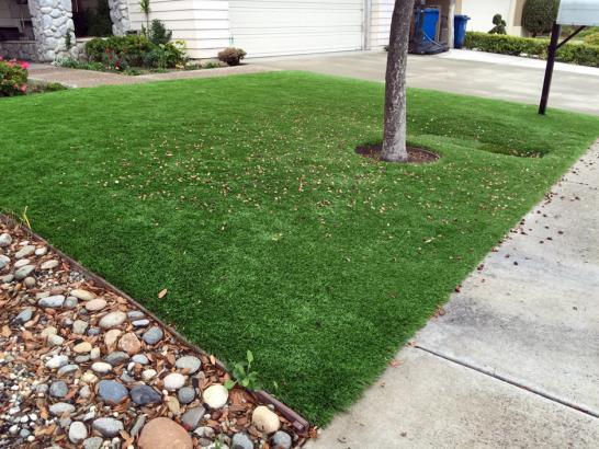 Artificial Grass Photos: Synthetic Grass Cost Brambleton, Virginia Lawns, Front Yard Landscaping