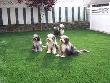 Artificial Grass Photos: Synthetic Grass Cost Draper, Virginia Lawn And Landscape, Backyard Design