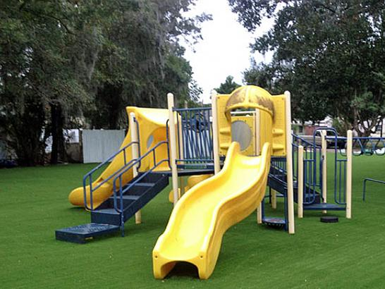 Artificial Grass Photos: Synthetic Grass Cost Orange, Virginia Indoor Playground, Parks