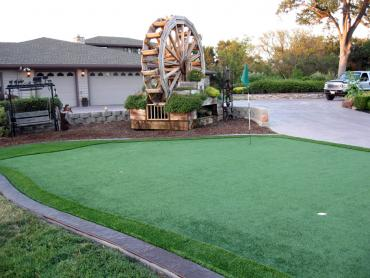 Artificial Grass Photos: Synthetic Grass Elliston, Virginia Putting Green Flags, Front Yard Landscape Ideas