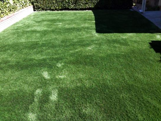 Artificial Grass Photos: Synthetic Lawn Bobtown, Virginia Pet Grass, Backyards