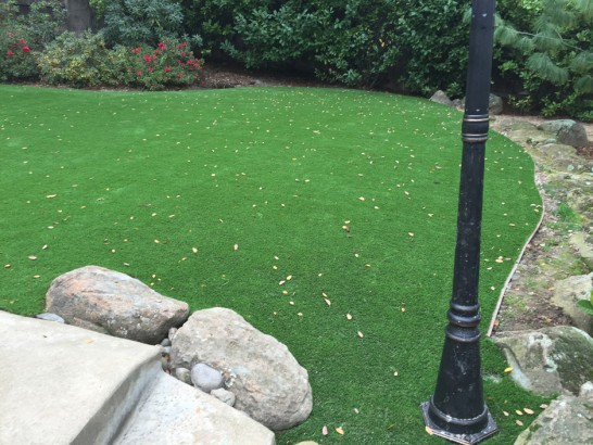 Artificial Grass Photos: Synthetic Lawn Ravensworth, Virginia Lawn And Garden, Beautiful Backyards