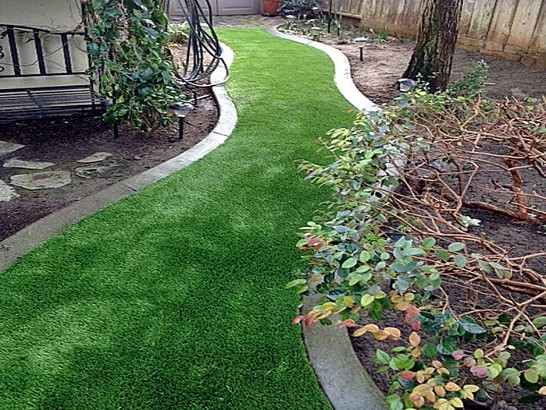 Artificial Grass Photos: Synthetic Lawn Spotsylvania Courthouse, Virginia Landscaping, Backyard Garden Ideas