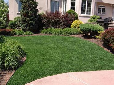 Synthetic Turf Abingdon, Virginia Rooftop, Front Yard Design artificial grass