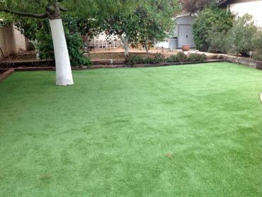 Artificial Grass Photos: Synthetic Turf Supplier Gwynn, Virginia Roof Top, Backyards