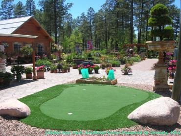 Synthetic Turf Supplier Norfolk, Virginia Landscape Rock, Backyard Landscape Ideas artificial grass