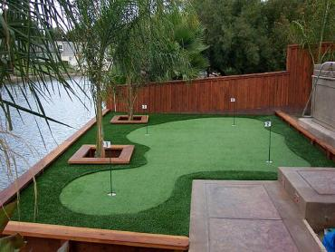 Artificial Grass Photos: Synthetic Turf Supplier Parksley, Virginia Putting Green, Backyards