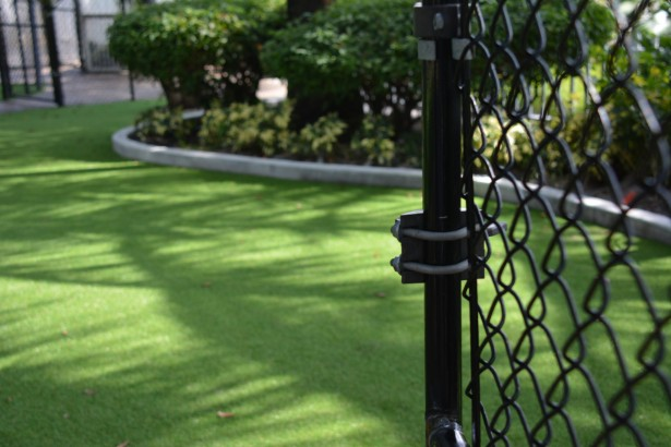 Ways to Conserve Water with Fake Grass artificial grass