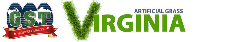 Artificial Grass Virginia