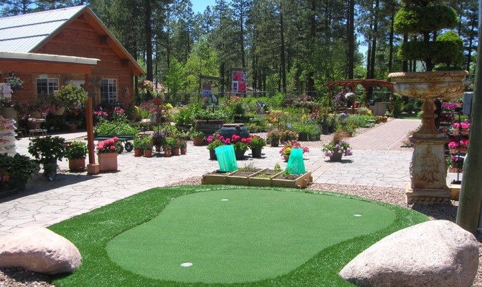 Putting Greens, Artificial Golf Putting Green in Virginia