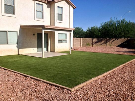 Synthetic Grass Warm Springs, Virginia City Landscape ... on Artificial Turf Backyard Ideas id=69094